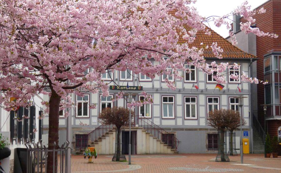 Rathaus Sarstedt im Fruehling Foto Kirchhoff