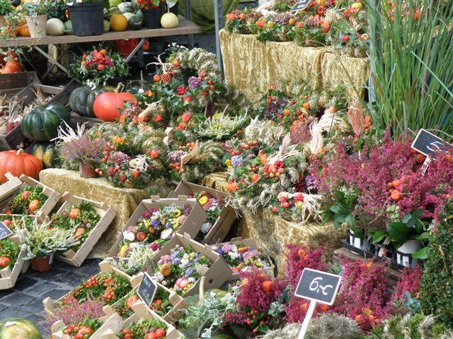 © Hildesheim Marketing GmbH Bauernmarkt Hildesheim